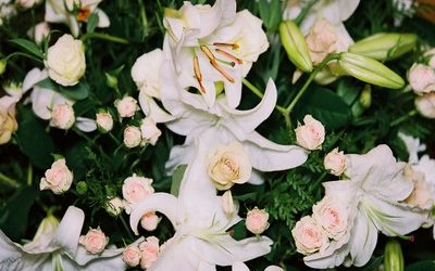 Are you looking for an Adelaide Hills wedding florist?